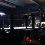 Espoon Kehähait osallistui Loimaa Fight Nightiin yhden kilpailijan voimin
